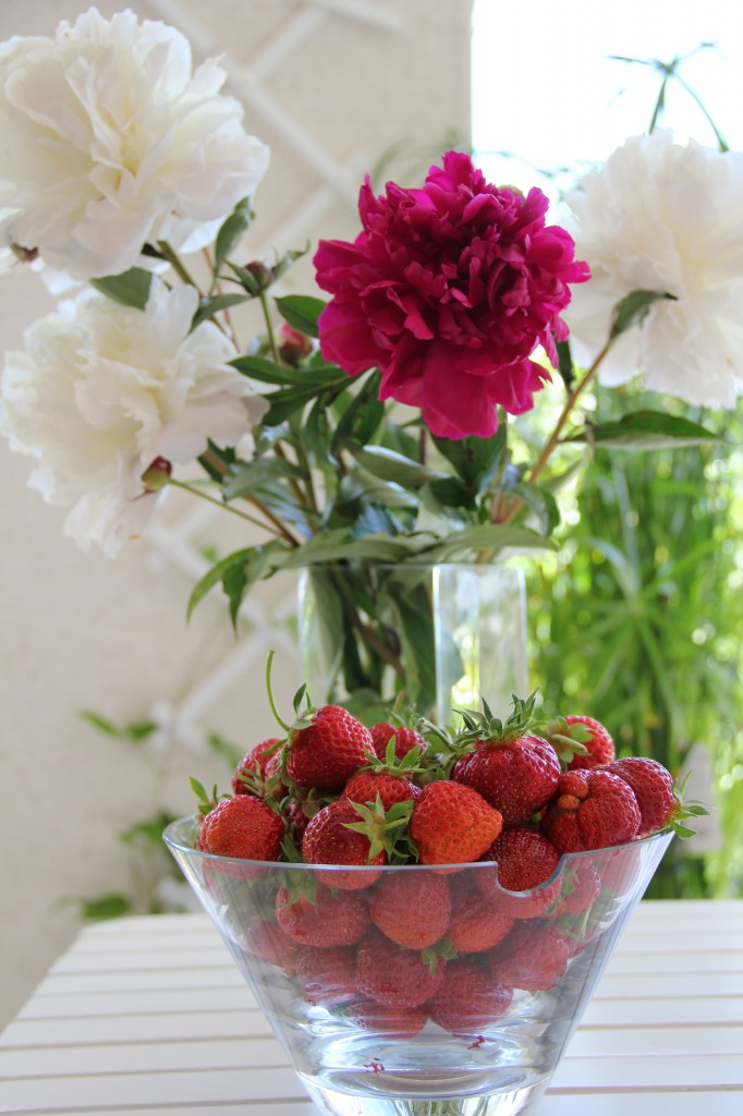 Strawberry picking, flower collecting 059