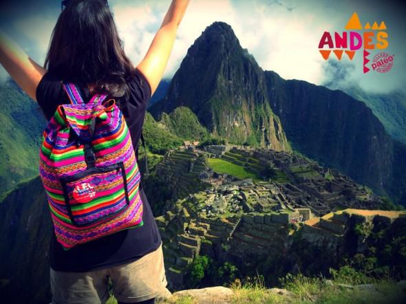 Paléo Andes