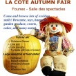 Autumn fair 2014-4