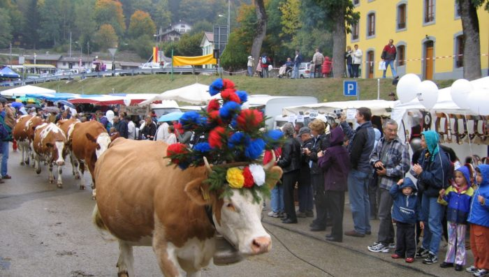 Expat fair in Morges, Cows in St Cergue and English Theatre in Divonne