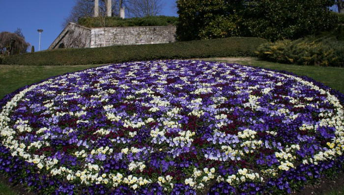 Spring in Nyon – March newsletter now out/ Events coming up