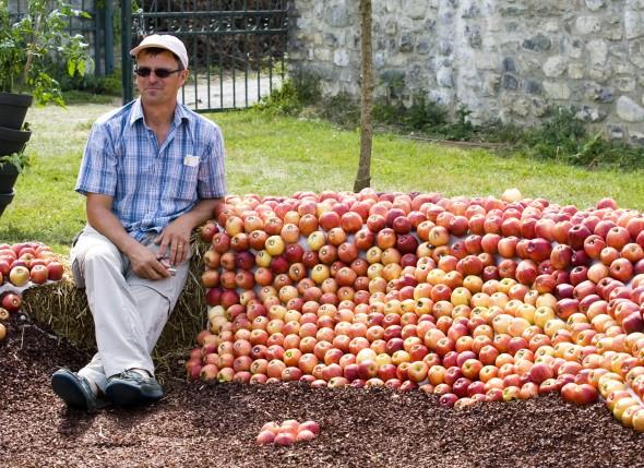 jdf man with apples 1