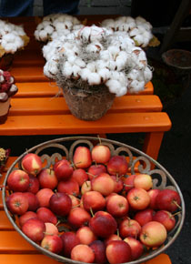Autumn Fair and Wine fair in Nyon/ Afternoon tea in Morges at Classic Car show