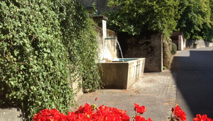 Living in Bursinel – Its Restaurants, Social life, Schools and Vineyards