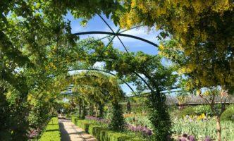 Nyon Museums Re-Open on 16 May. Iris Gardens at Château de Vullierens now Open